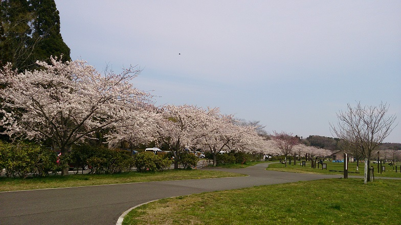 加瀬沼2014-9