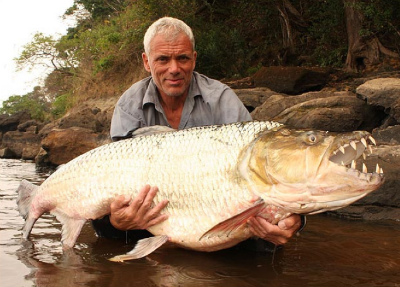 goliath-tigerfish.jpg