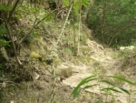 マヤカンへのロープ