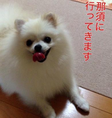 1_convert_20140807065951.jpg