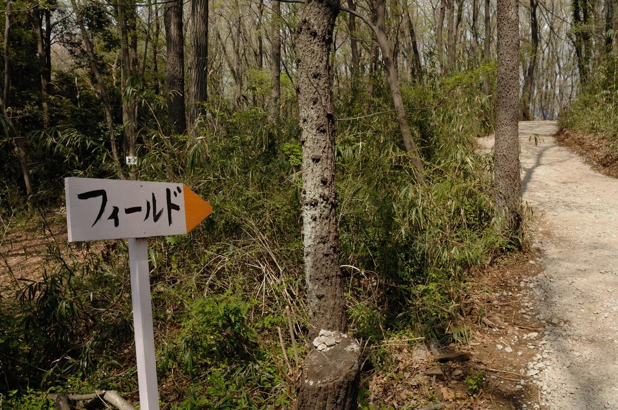 2014/04/09(水)OPS平日定例戦