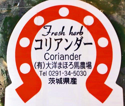 コリアンダーラベル
