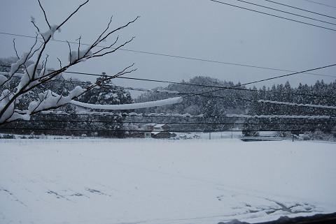 大雪が降っている