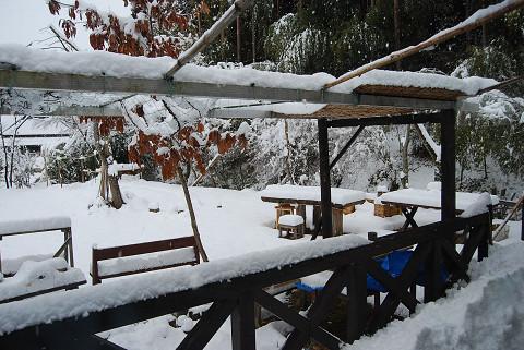 雪におおわれた庭