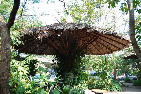 草屋根の休み場