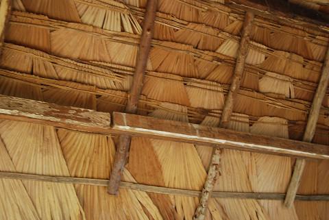 草の屋根がきれい