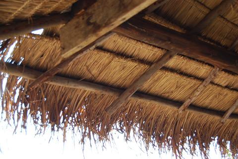 別の草屋根1