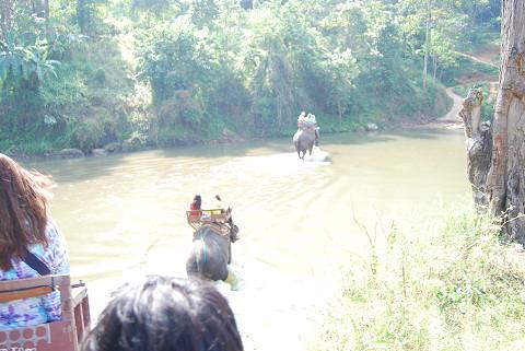 象の川渡り