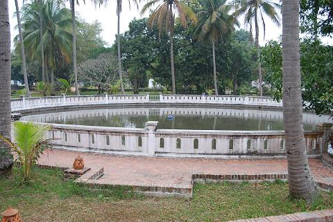 王様の魚の池