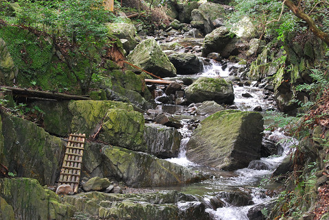 くらがり渓谷の渓流