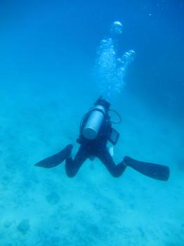 ダイブマスタートレーニング、タオ島