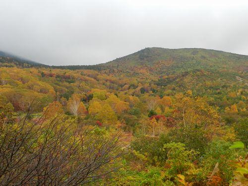 コークと磐梯山 1