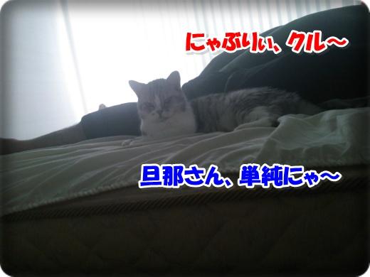 DSC_1283-005.jpg