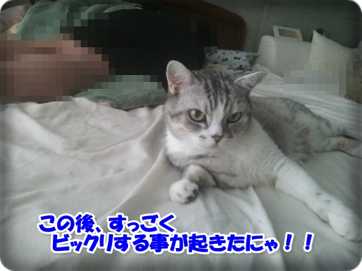 DSC_1298-003.jpg