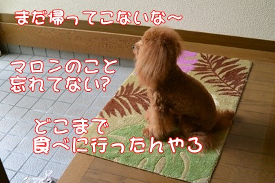 RDSC_2253_R.jpg