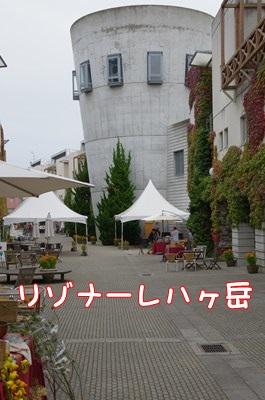 RK52C5424_R.jpg