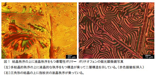 tukuba-univ_metal_ref_polymer_double-layer_image.png