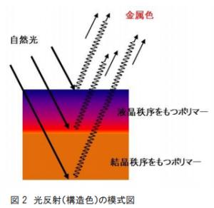 tukuba-univ_metal_ref_polymer_reflect_image.png