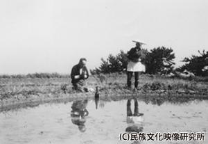 F022佐渡車田01_300