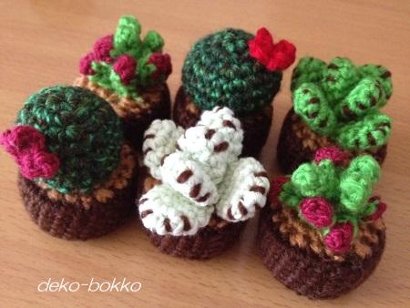 くろちゃんの多肉編み 201409