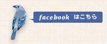 demicoのフェイスブックページはこちら