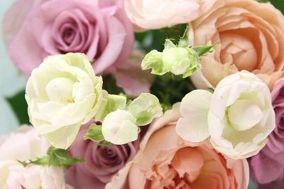 flower_2014_1010_1.jpg