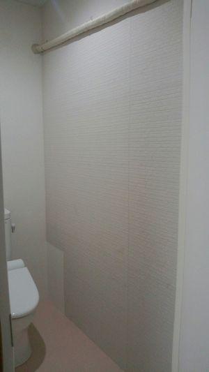 壁塗り実践①