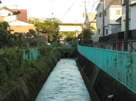 酒匂川左岸幹線用水路・新十文字橋北