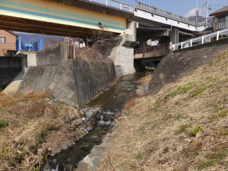 河南沢・酒匂川左岸堤防付近