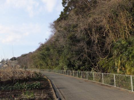陽原段丘崖と相模原幹線用水路(大堀)
