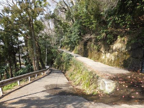 ひの坂・陽原河岸段丘崖