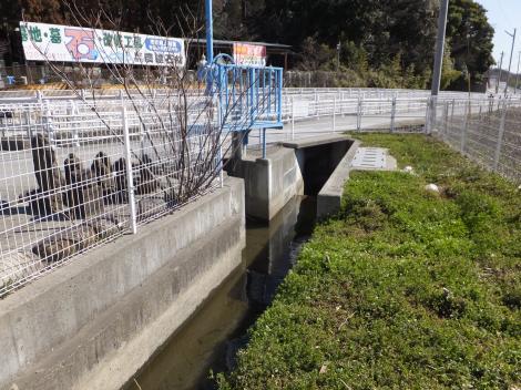 相模原幹線用水路(大堀)亀形橋付近