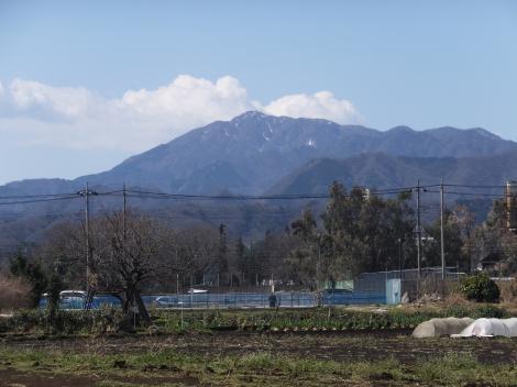 横浜水道みちと大山