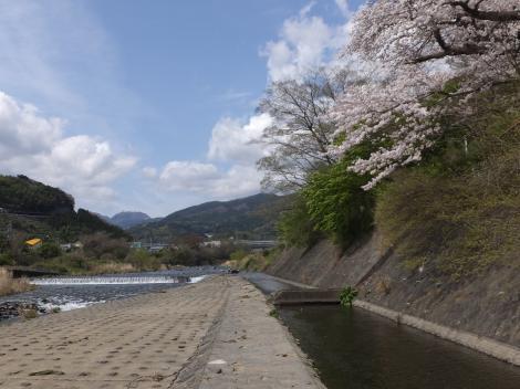 小田原用水取水口の上流