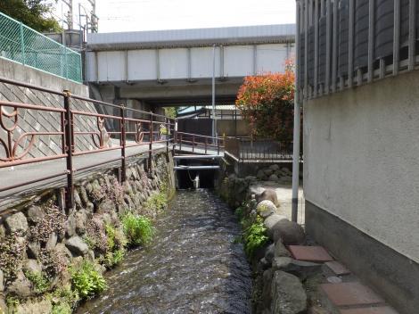 小田原用水・東海道新幹線西側