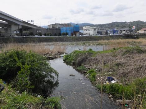 小田原用水河口(終点)