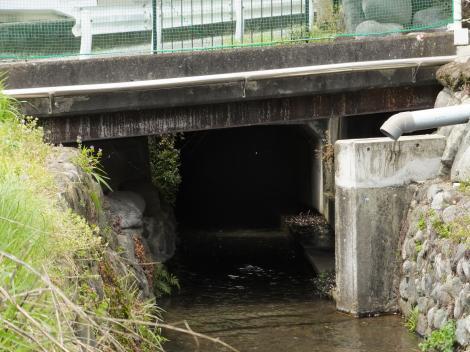 松田用水・河南沢信号南付近