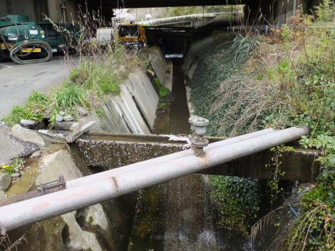 松田用水取水源のひとつ河南沢