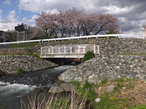 酒匂川左岸の放流口