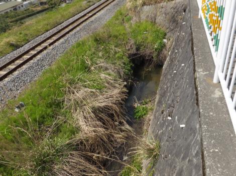 松田用水・R246村雨信号付近