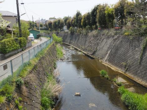 山並橋から鶴見川下流を望む