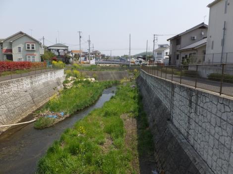 鶴見川・むかいだ橋下流