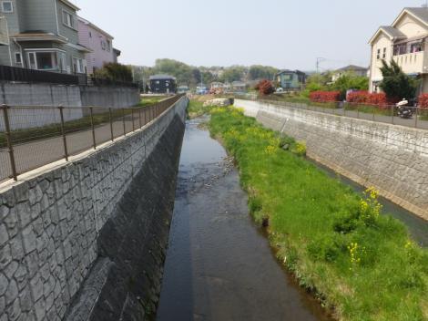 鶴見川・むかいだ橋上流