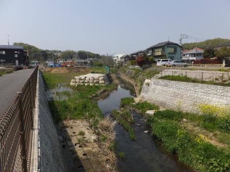鶴見川と捷水路・宮川橋下流
