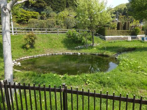 鶴見川源流の泉