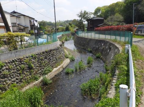 鶴見川・山の端橋から下流を見る