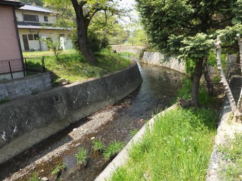 鶴見川・大泉寺バス停付近