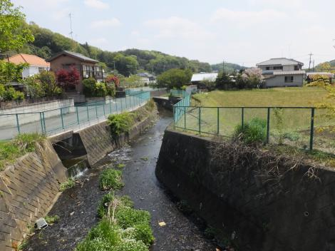 鶴見川・新竹之内橋より下流を見る