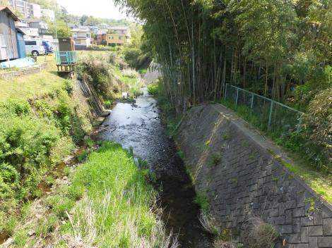 鶴見川・坂下橋より下流を見る