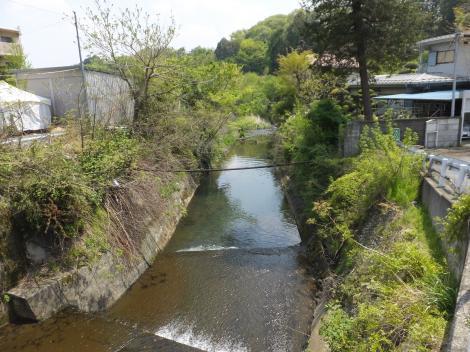 鶴見川・図師大橋より下流を見る